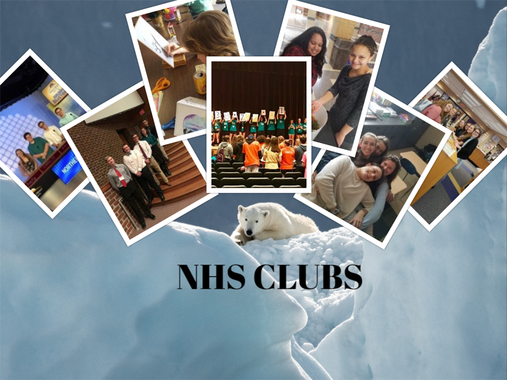 NHS Clubs Photo Collage