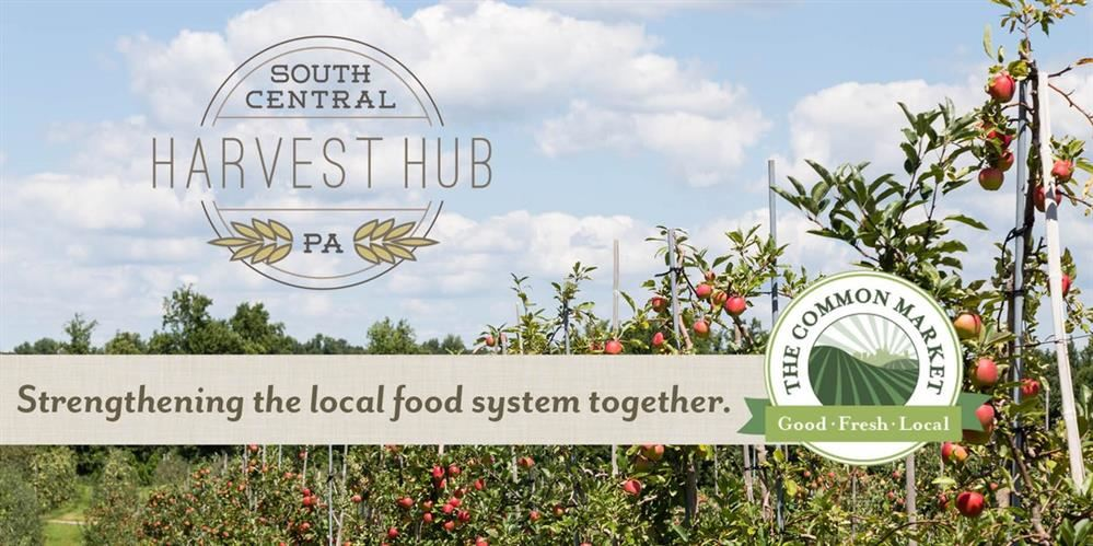 South Central PA Harvest Hub Partners with Common Market